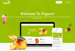 AmyOrganic – Premium Responsive Organic and Healthy WordPress Theme