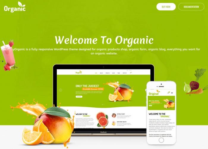AmyOrganic – Premium Responsive Organic and Healthy WordPress Theme