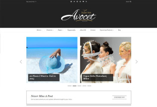 Avocet – Premium Responsive WordPress Blog Theme
