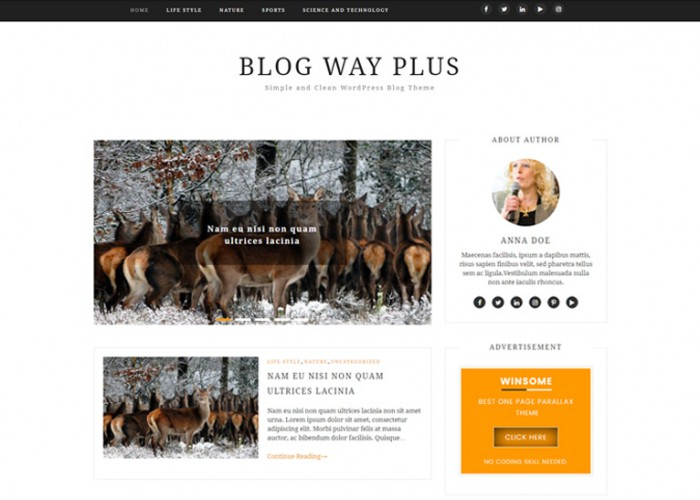 Blog Way Plus – Premium Responsive Minimal WordPress Blog Theme