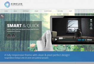 Circles – Premium Responsive Multi-Purpose WordPress Theme