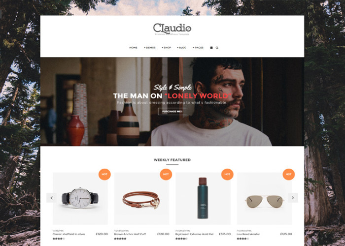 Claudio – Premium Responsive Ecommerce WordPress Theme