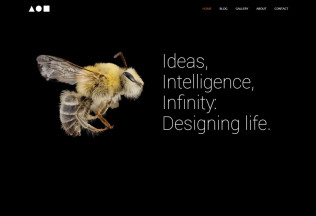 Colors Creative – Premium Responsive Portfolio WordPress Theme
