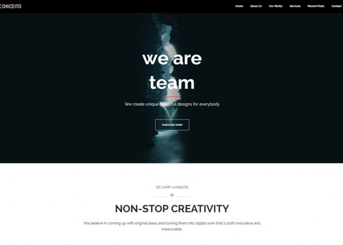 Conceito – Premium Responsive One Page Muse Template