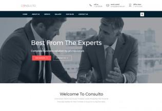 Consulto – Premium Responsive Consulting & Business WordPress Theme