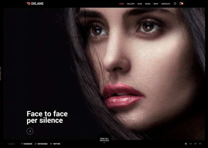 Delane – Premium Responsive Photography WordPress Theme
