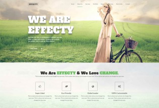 Effecty – Premium Responsive One Page Drupal Theme