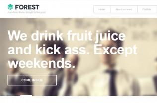 Forest – Premium Responsive WordPress Theme