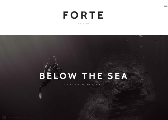 Forte – Premium Responsive Stylish WordPress Theme for Writers