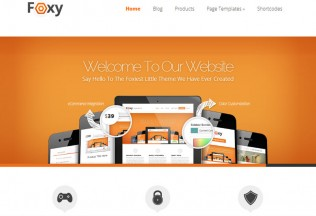 Foxy – WordPress Premium Responsive Theme