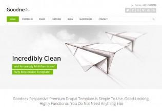 Goodnex – Premium Responsive Business Drupal Theme