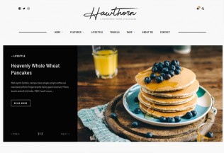 Hawthorn – Premium Responsive Blog & Shop WordPress Theme