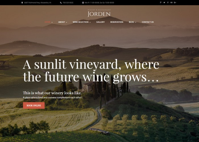 Jorden – Premium Responisve Wine & Winery WordPress Theme