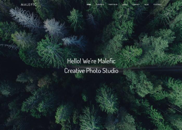 Malefic – Premium Responsive Multipurpose One Page HTML5 Template