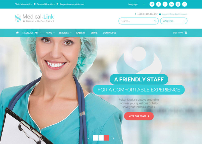 Best Premium Responsive Healthcare Themes 2013 - Free Demo