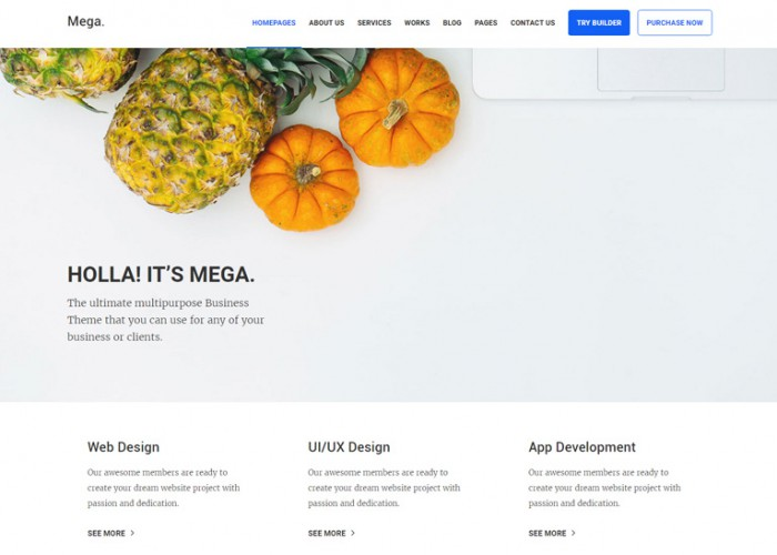 Mega – Premium Responsive Multipurpose HTML5 Template with Page Builder