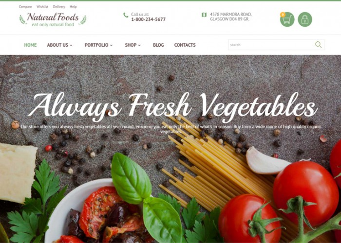 Natural Foods – Premium Responsive WooCommerce WordPress Theme