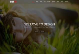 North – Premium Responsive One Page Parallax WordPress Theme