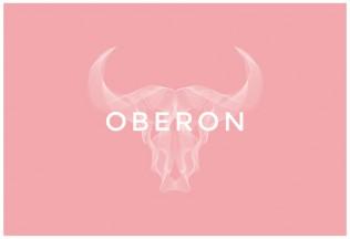 Oberon – Premium Responsive Portfolio WordPress Theme