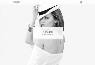 Prospect – Premium Responisve Minimal Portfolio HTML5 Template