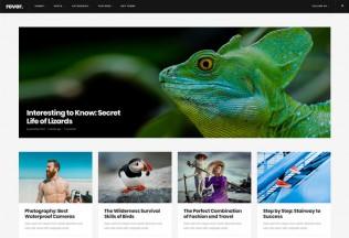 Rever – Premium Responsive Clean and Simple Magazine WordPress Theme