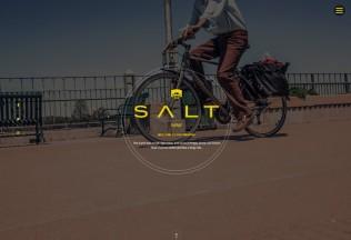 Salt – Premium Responsive WooCommerce Shop WordPress Theme