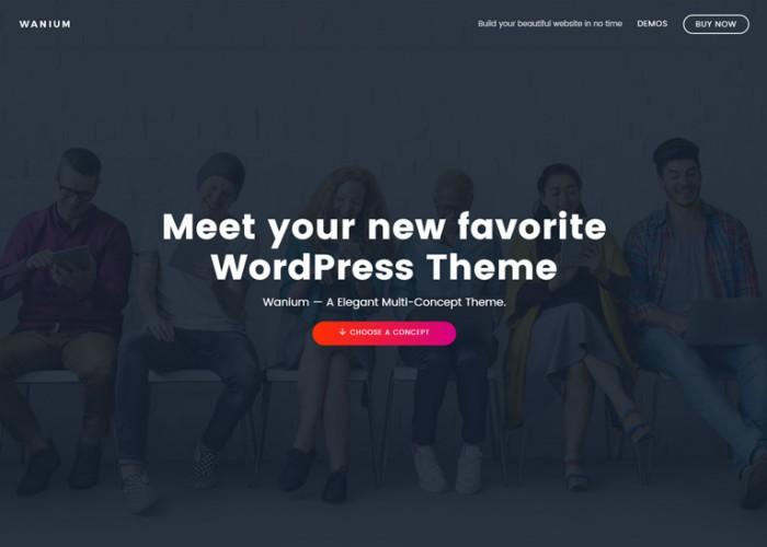Wanium – Premium Repsonsive Elegant Multi-Concept WordPress Theme