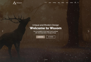 Waxom – Premium Responsive Clean and Universal WordPress Theme