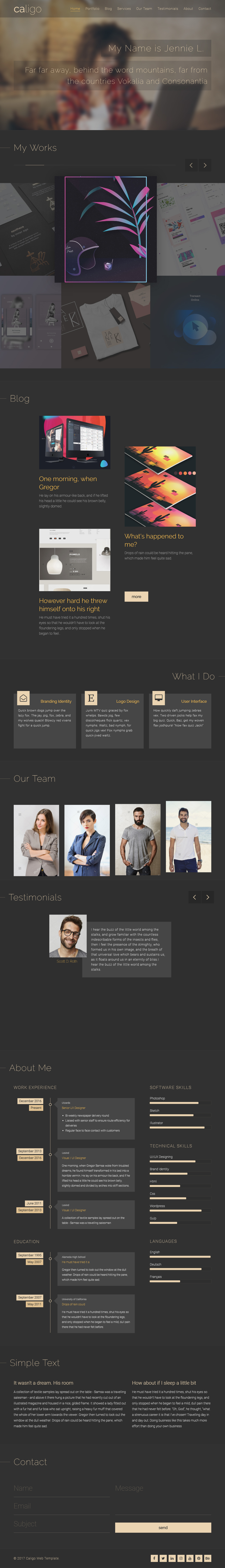 40 Best Freelance Website Templates 2017-2018 - Responsive Miracle