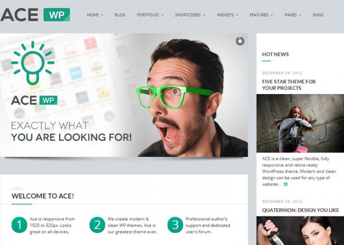 Ace – Premium Responsive WordPress All Purpose Theme