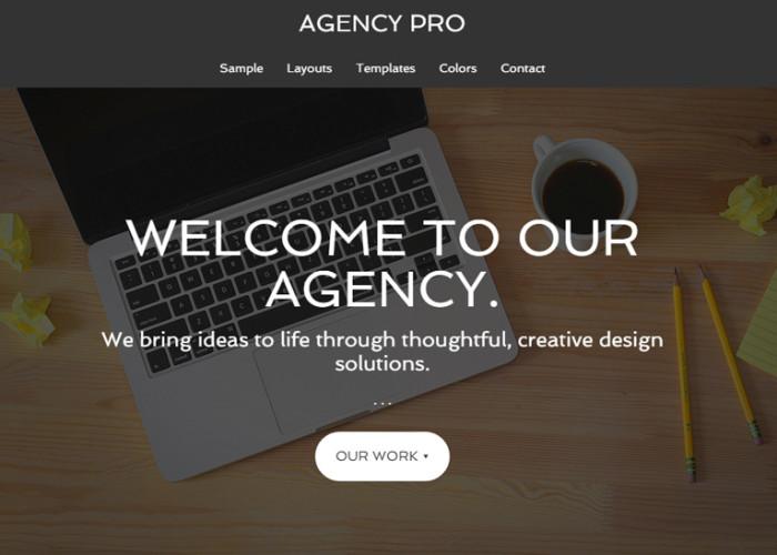 Agency Pro – Premium Responsive Agency WordPress Theme