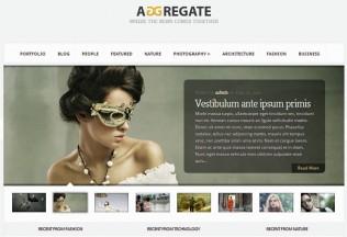 Aggregate – WordPress Premium Responsive Theme