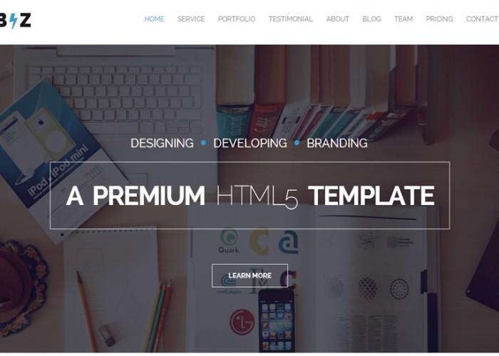Biz – Premium Responsive One Page Parallax HTML5 Template