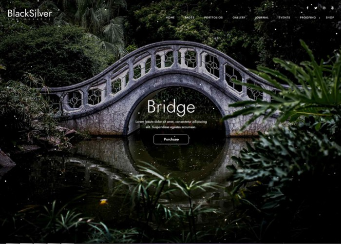 Blacksilver – Premium Responsive Photography WordPress Theme