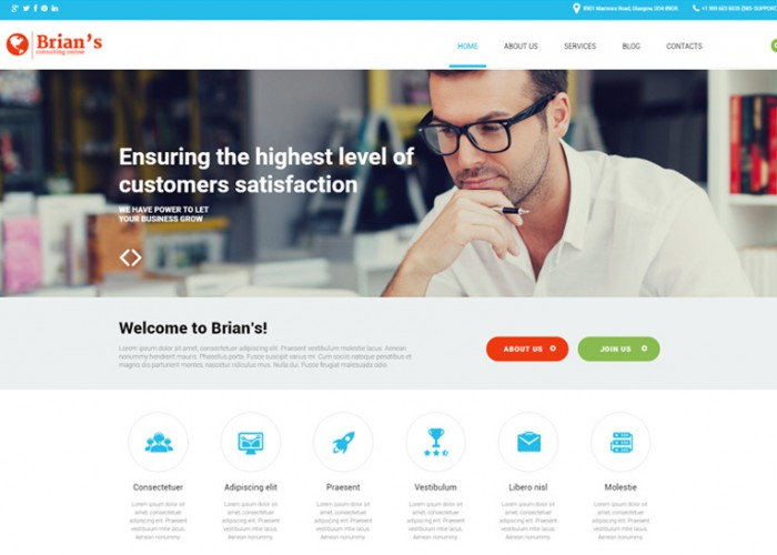 Brian's – Premium Responsive Consulting Agency WordPress Theme