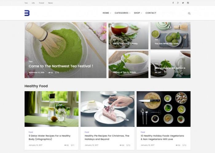Buggy – Premium Responsive Magazine and Blog WordPress Theme