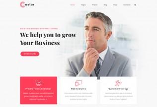Castor – Premium Responsive Business Consulting WordPress Theme