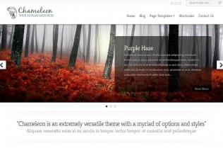 Chameleon – WordPress Premium Responsive Theme