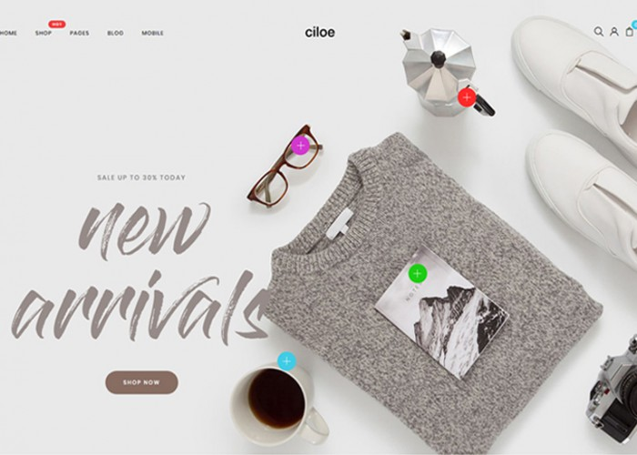 Ciloe – Premium Responsive WooCommerce WordPress Theme
