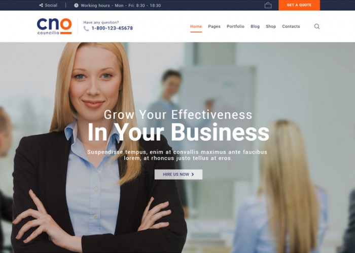 Councilio – Premium Responsive Financial Consulting WordPress Theme
