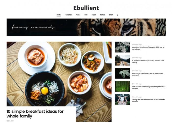 Ebullient – Premium Responsive News and Magazine WordPress Theme