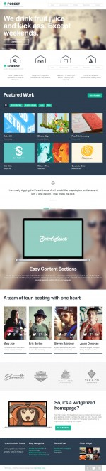 10+ Best Responsive Wordpress Themes with Flat Design in 2013