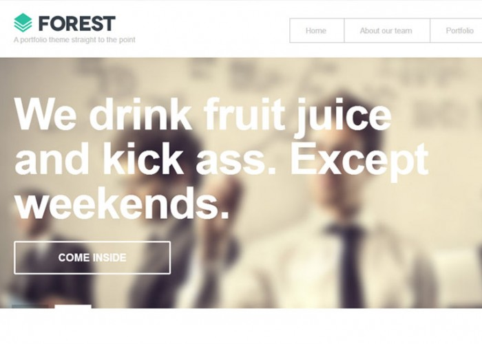 Forest – Premium Responsive WordPress Theme