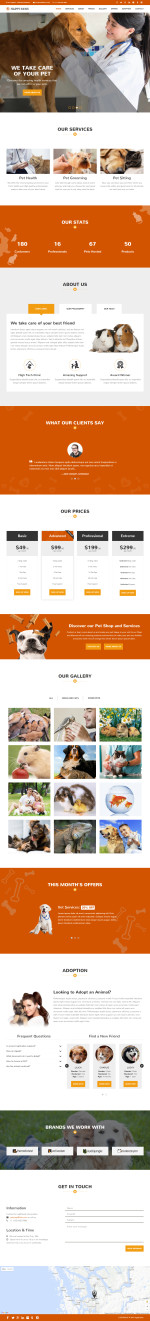 Best Responsive HTML5 Animals and Pets Templates in 2015