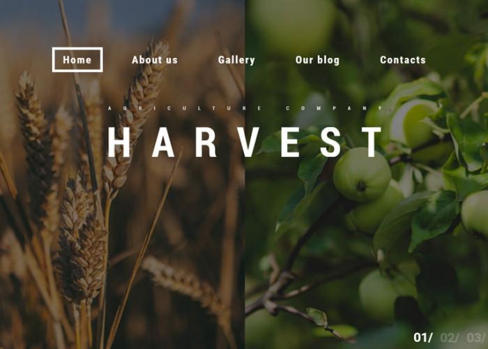 Harvest – Premium Responsive Agriculture WordPress Theme