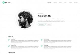 Leven – Premium Responsive CV/Resume WordPress Theme