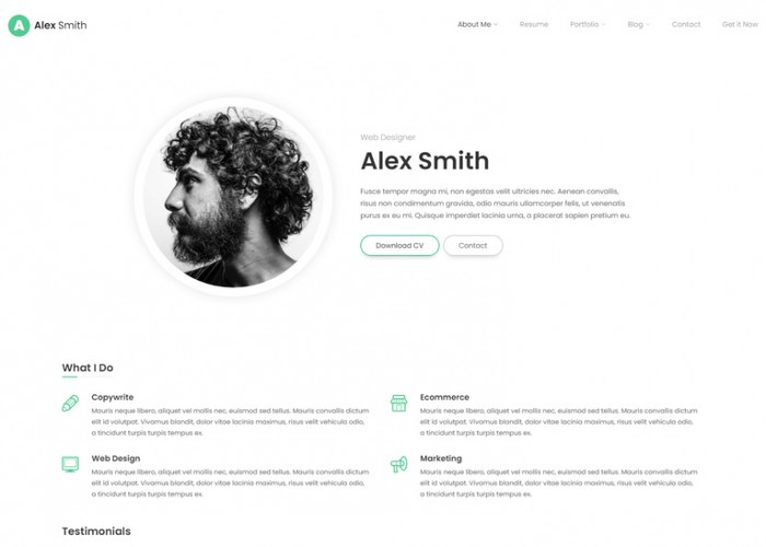 Leven – Premium Responsive CV/Resume WordPress Theme