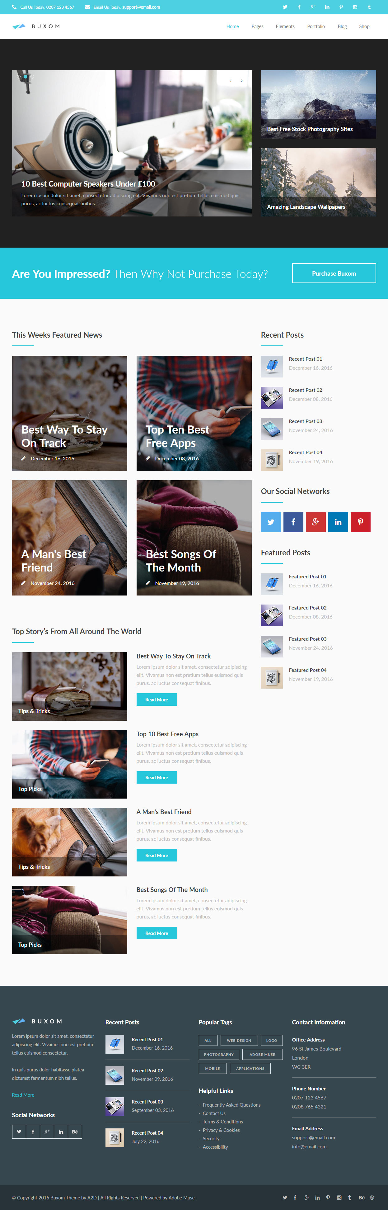 Best News And Magazine Muse Templates In 2015 Responsive Miracle
