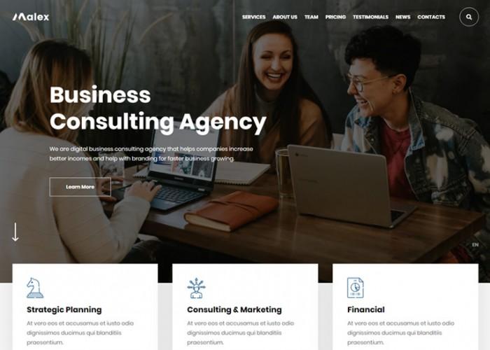 Malex – Premium Responsive Business Consulting WordPress Theme