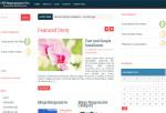 MegaResponsive Pro – Premium Responsive Magazine WordPress Theme